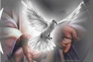 Espíritu Santo (2)