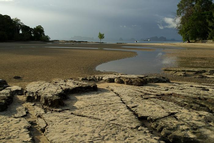 Isla Tsunami 2